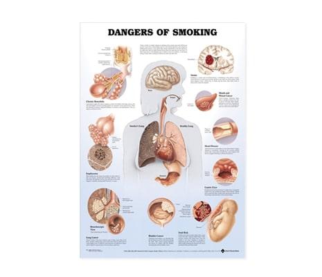 แผ่นภาพนูน 3D อันตรายของบุหรี่ (อังกฤษ)