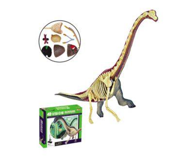 4D Vision หุ่นไดโนเสาร์ Brachiosaurus